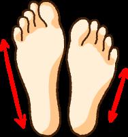 左右の足の大きさが違うイラスト
