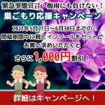 WEB限定!巣ごもり応援キャンペーン!(5/27~6/30)